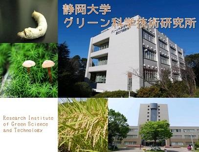 グリーン科学技術研究所
